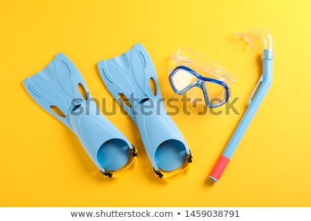 Mask and flippers on a beach Stock photo © nessokv