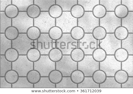 Tracery Gray Paving Slabs. Stock photo © tashatuvango
