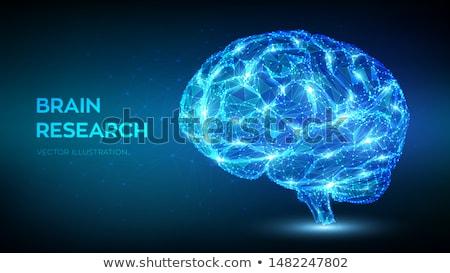 Foto d'archivio: Digitale · cervello · stilizzato · codice · binario · faccia · design