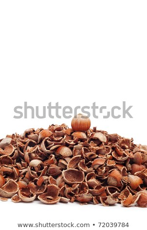 small pile of hazelnuts and one cracked stock photo © digitalr