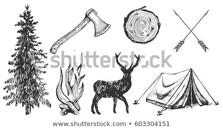 Ax grafica simbolo stilizzato legno foresta Foto d'archivio © mikemcd