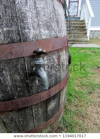 Vintage latón barril aislado blanco metal Foto stock © Digifoodstock
