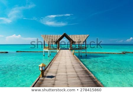 Mooie tropisch strand strand water huis boom Stockfoto © meinzahn
