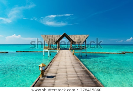 Güzel tropikal plaj plaj su ev ağaç Stok fotoğraf © meinzahn