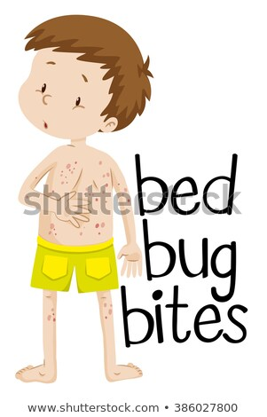 Menino cama bicho escolas crianças criança Foto stock © bluering