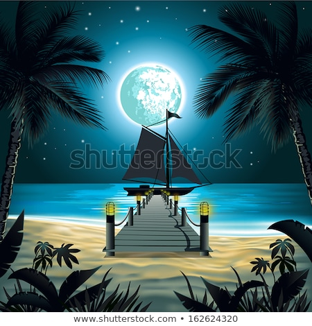 Art Moonlight tropical sea beach night; vacation at the Palms Re Stock photo © Konstanttin