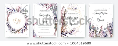 A floral border Stock photo © bluering
