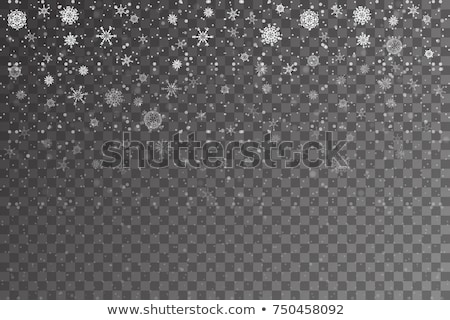 objętych · śniegu · wzór · biały · wektora · zimą - zdjęcia stock © beholdereye