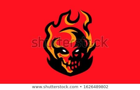 Skull 01 Stock photo © Vanzyst