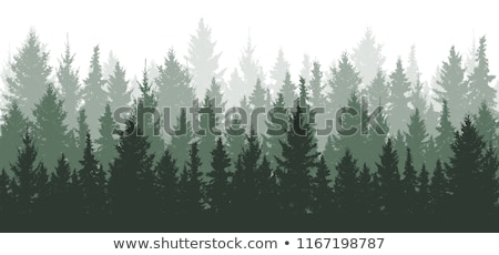 seamless background with trees in garden stock photo © bluering