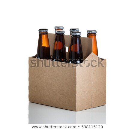 Six pack of bottled beer in generic brown cardboard carrier on w Stock photo © tab62