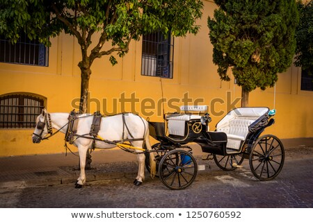 horse  in front of house in andalusia Stock photo © compuinfoto