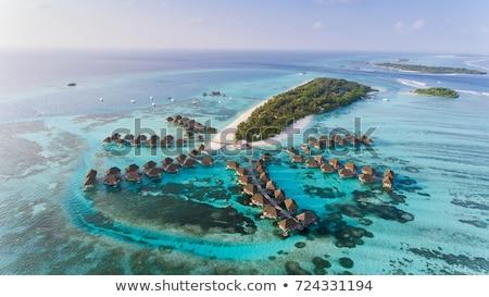 Mooie strand water natuur zee zomer Stockfoto © Pakhnyushchyy