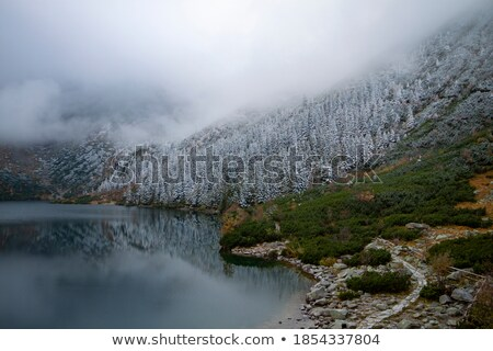 Winter Tatry Mountains Stock photo © FOTOYOU