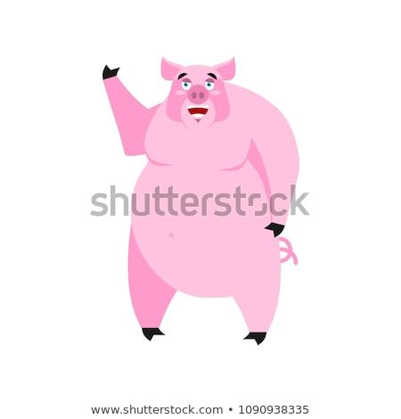 Porco feliz alegre emoção branco Foto stock © popaukropa