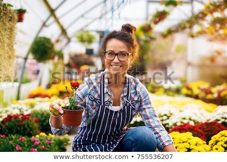Alegre mujer mirando cámara pie invernadero Foto stock © deandrobot