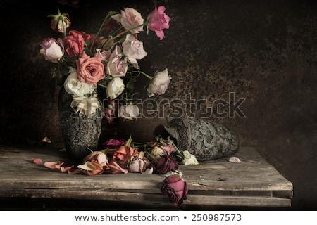 violin and red rose on black background stock photo © valeriy