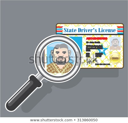 Foto stock: Drivers License Under Magnifying Glass Vector Illustration