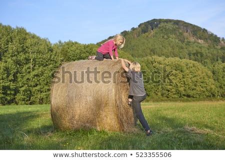 Fille sautant foin bale liberté ciel bleu Photo stock © IS2