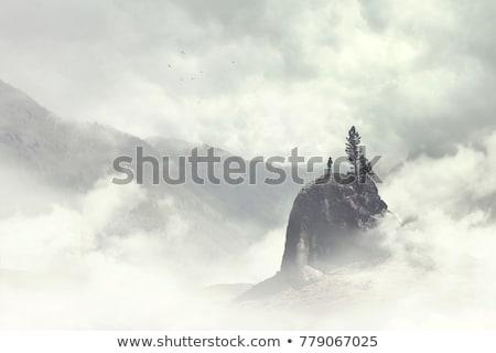 Invierno paisaje niebla montanas nevadas abeto Foto stock © Kotenko