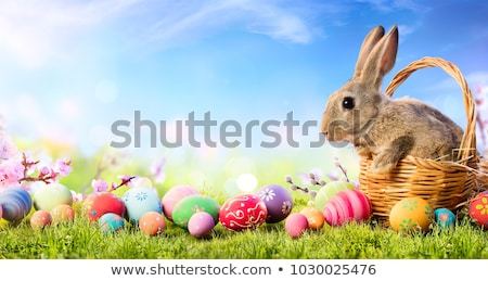 Cute Easter bunny with a basket of colorful eggs Stock photo © bedlovskaya