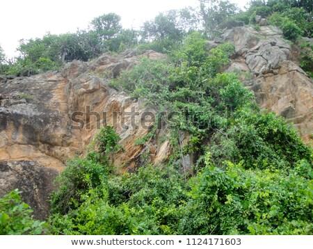 Stok fotoğraf: Coast Cliff Rock Face Close Up