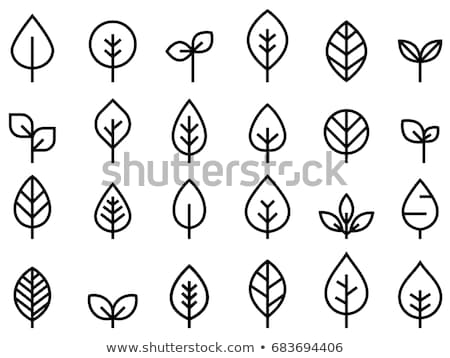 cute vector foliage collection with tree leaves and plants stock photo © pravokrugulnik