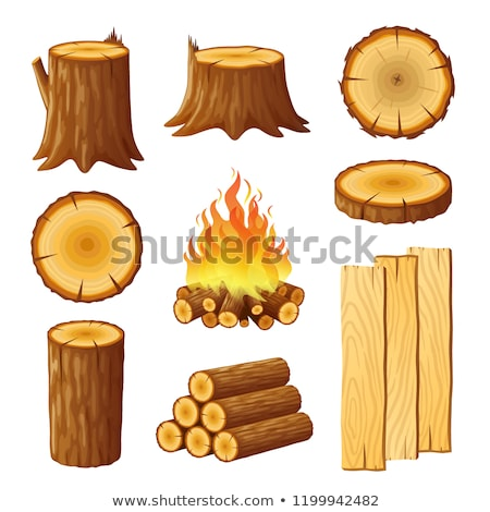 set of logging stumps and boards woodpile and wood logs stock photo © marysan