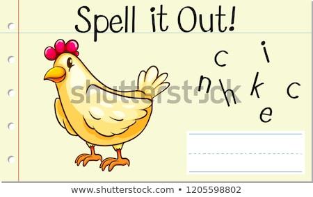 Spell English word chicken Stock photo © bluering