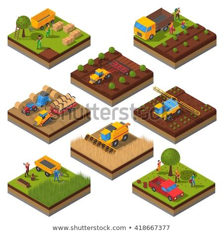 Trator trabalhar fazenda vetor ícone desenho animado Foto stock © robuart