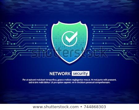 Segurança escudo placa de circuito digital linhas isolado Foto stock © kyryloff