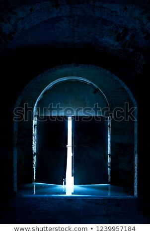 открытых дверей подсветка открытых белый двери 3d визуализации Сток-фото © make