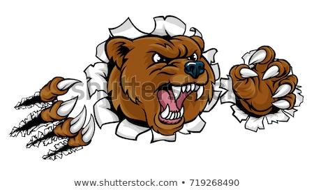 Tenha avanço zangado animal esportes mascote Foto stock © Krisdog