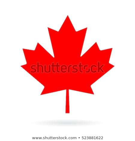 tree and maple leaves silhouettes stock photo © 5xinc