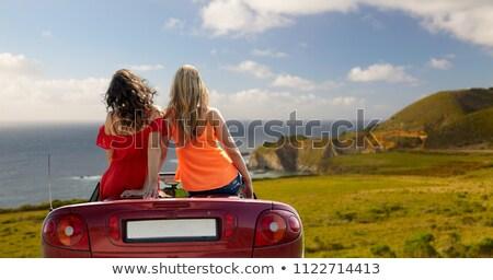 Boldog nő autó nagy dombok utazás Stock fotó © dolgachov