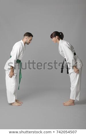 karate · vadászrepülő · verekedés · sport · szimbólum · izolált - stock fotó © jossdiim