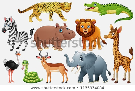 Afrikai vad farm állatok pop art retro klasszikus Stock fotó © studiostoks