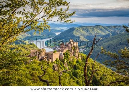 修道院 教会 オーストリア 鐘 塔 空 ストックフォト © borisb17