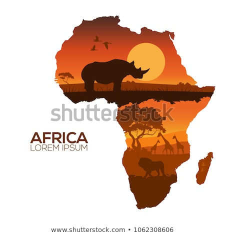 pattern of Africa jungle elements with african animals and trees Stock photo © Margolana