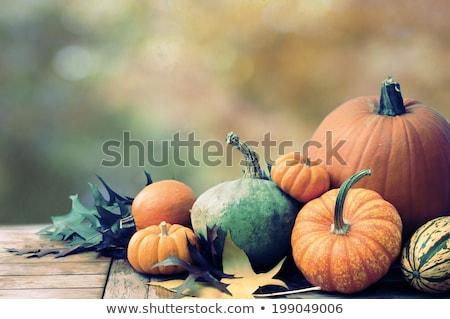 Grupo grande pequeno abóboras laranja verde Foto stock © sarahdoow