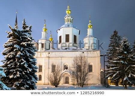 Onderstelling kathedraal Rusland orthodox kerk gebouw Stockfoto © borisb17