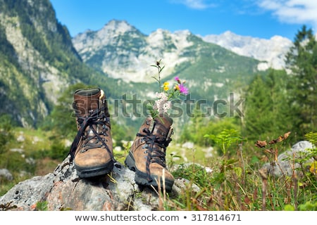 Touristic boot with flowers in the forest. Stock photo © olira