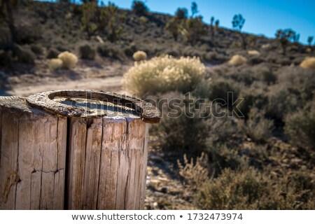 さびた 馬蹄 木の幹 砂漠 水 金属 ストックフォト © flariv