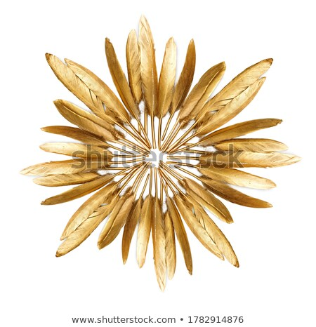 Golden feather texture background. Stock photo © Leonardi