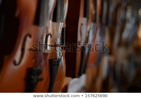Violin Viola Close Isolated on Black stock photo © mkm3