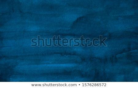 青 孔雀 頭 誇りに思う 徒歩 草 ストックフォト © Elenarts