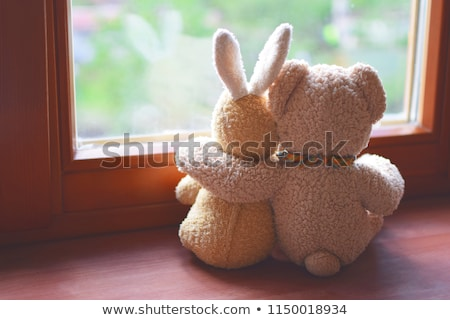 dos · osos · de · peluche · mirando · otro · blanco · amor - foto stock © ivelin