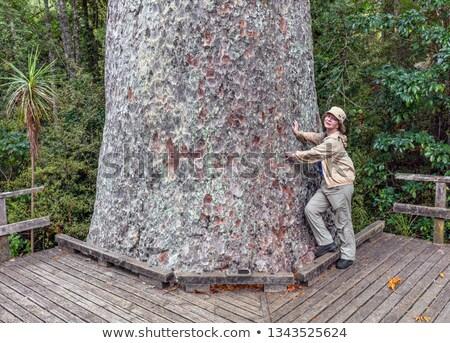 nő · legnagyobb · fa · világ · erdő · emberi - stock fotó © emiddelkoop