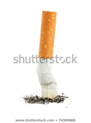 Cigarrillo trasero ceniza primer plano aislado blanco Foto stock © boroda