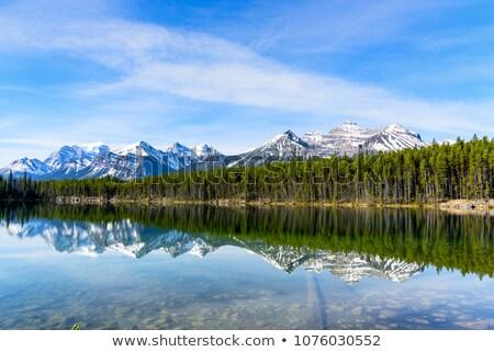 Göl dağlar ağaçlar düşmek sabah bulutlar Stok fotoğraf © gardensymphony